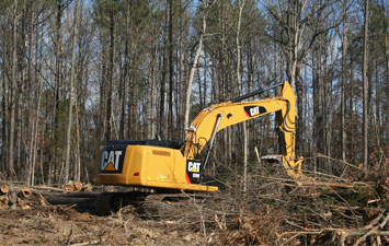 Land Cleaning BC Land Cleaning Service in BC Land Cleaning Companies in BC Best House Land Cleaning Service Provider of BC Home land Cleaning Contractors in BC